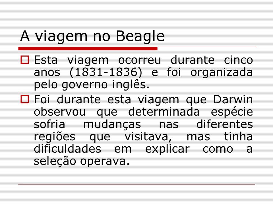 A viagem no Beagle Esta viagem ocorreu durante cinco anos (1831-1836) e foi organizada pelo governo inglês. Foi durante esta viagem que Darwin observo