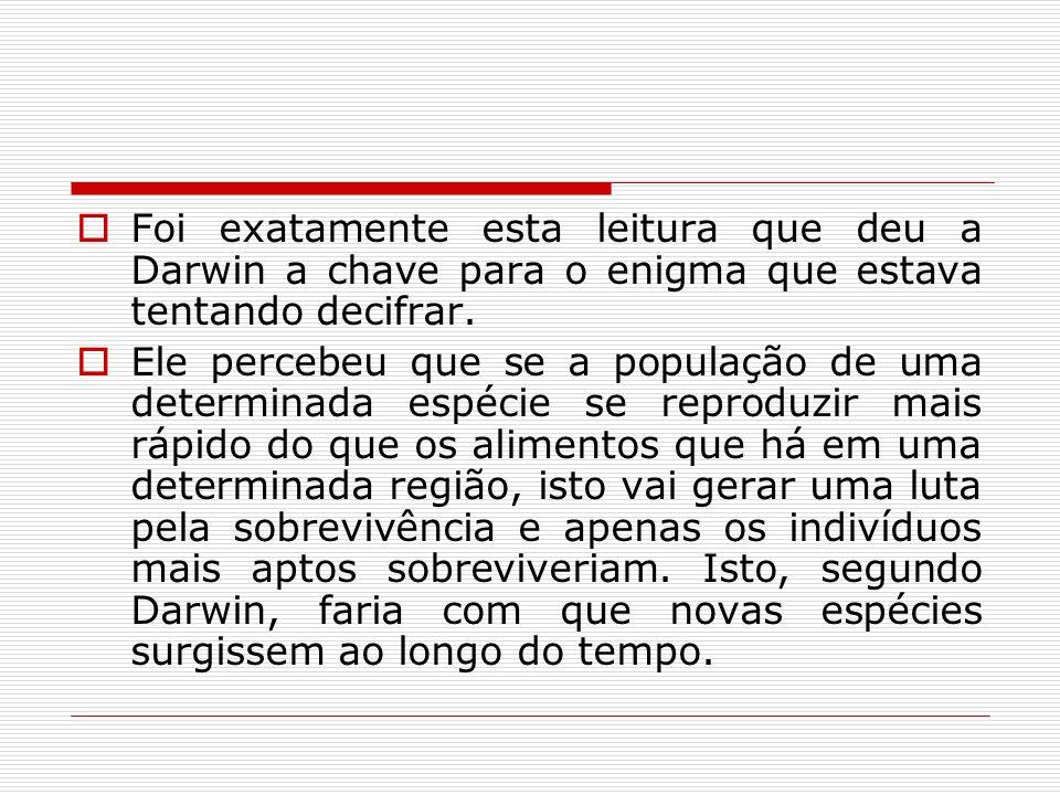 Foi exatamente esta leitura que deu a Darwin a chave para o enigma que estava tentando decifrar. Ele percebeu que se a população de uma determinada es