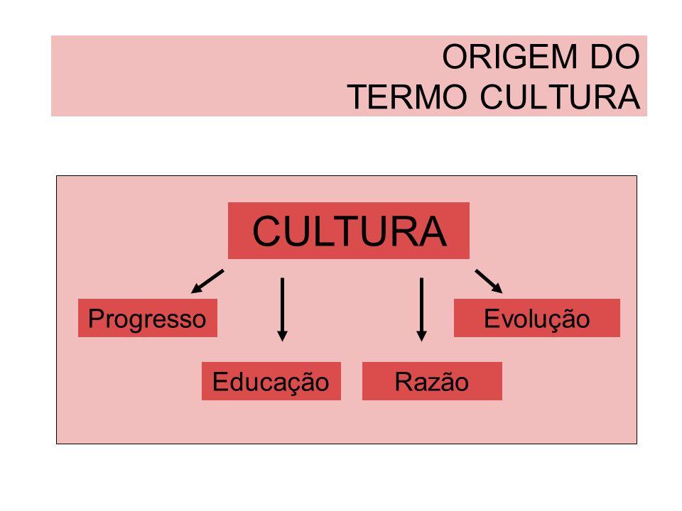 ORIGEM DO TERMO CULTURA No vocabulário francês do século XVIII: CULTURA Progressos individuais CIVILIZAÇÃO Progressos coletivos