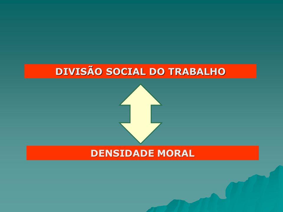 DIVISÃO SOCIAL DO TRABALHO DENSIDADE MORAL