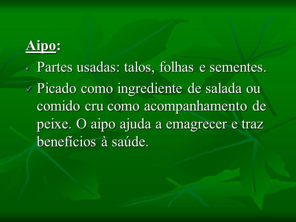 Angélica : Angélica : Folhas na forma de salada; Folhas na forma de salada; Talos novos na forma de chá.