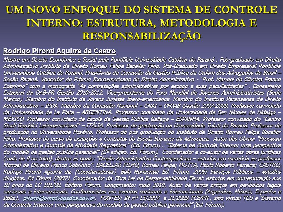 UM NOVO ENFOQUE DO SISTEMA DE CONTROLE INTERNO: ESTRUTURA, METODOLOGIA E RESPONSABILIZAÇÃO UM NOVO ENFOQUE DO SISTEMA DE CONTROLE INTERNO: ESTRUTURA,