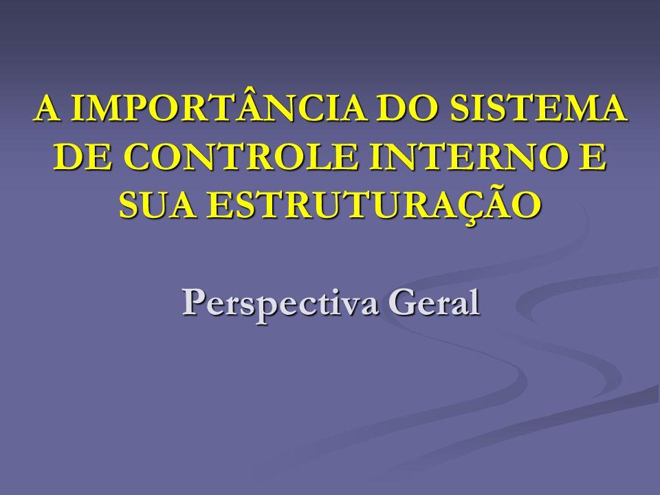 A IMPORTÂNCIA DO SISTEMA DE CONTROLE INTERNO E SUA ESTRUTURAÇÃO Perspectiva Geral