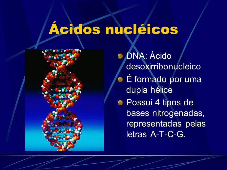 Ácidos nucléicos DNA: Ácido desoxirribonucleico É formado por uma dupla hélice Possui 4 tipos de bases nitrogenadas, representadas pelas letras A-T-C-
