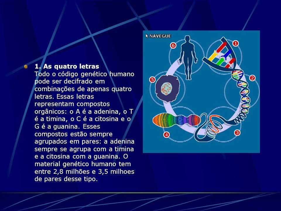 1. As quatro letras Todo o código genético humano pode ser decifrado em combinações de apenas quatro letras. Essas letras representam compostos orgâni