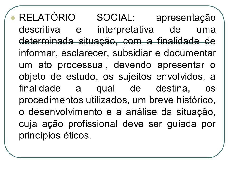 RELATÓRIO SOCIAL: apresentação descritiva e interpretativa de uma determinada situação, com a finalidade de informar, esclarecer, subsidiar e document