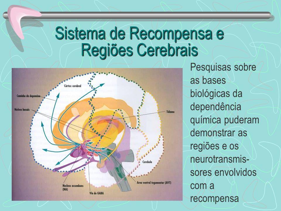 Sistema de Recompensa e Regiões Cerebrais Pesquisas sobre as bases biológicas da dependência química puderam demonstrar as regiões e os neurotransmis-