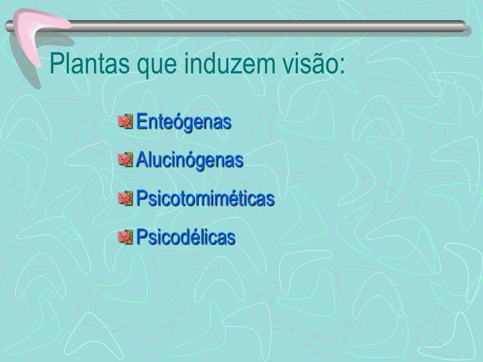 Plantas que induzem visão: EnteógenasAlucinógenasPsicotomiméticasPsicodélicas