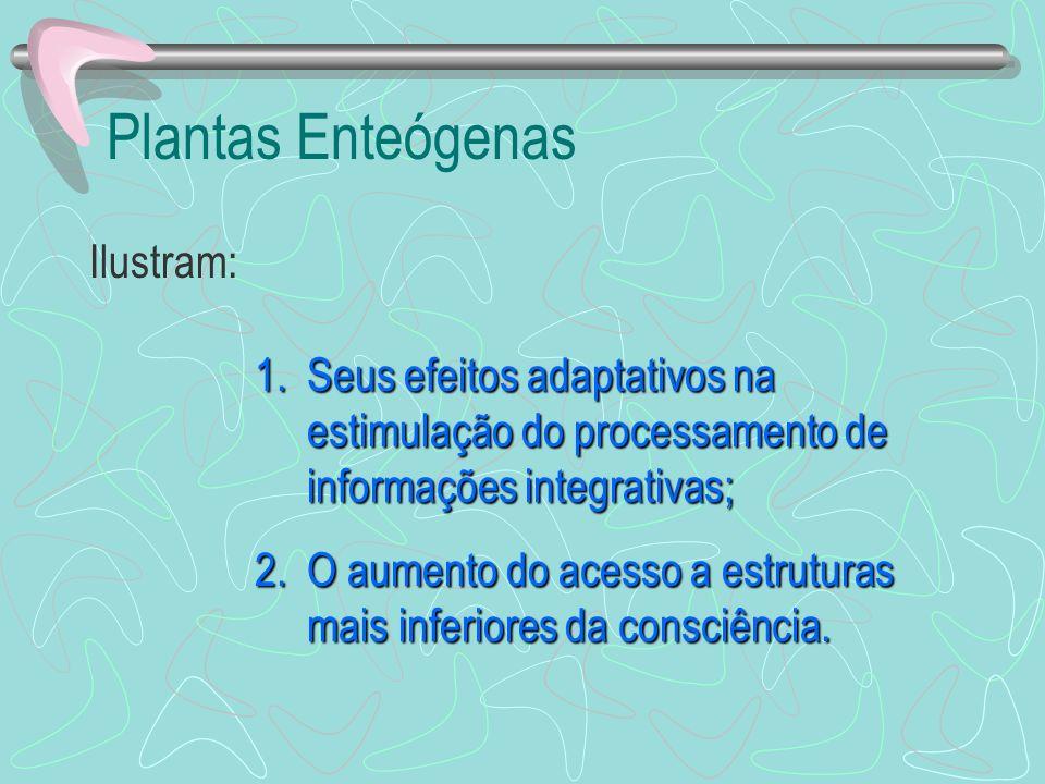 Plantas Enteógenas Ilustram: 1.Seus efeitos adaptativos na estimulação do processamento de informações integrativas; 2.O aumento do acesso a estrutura