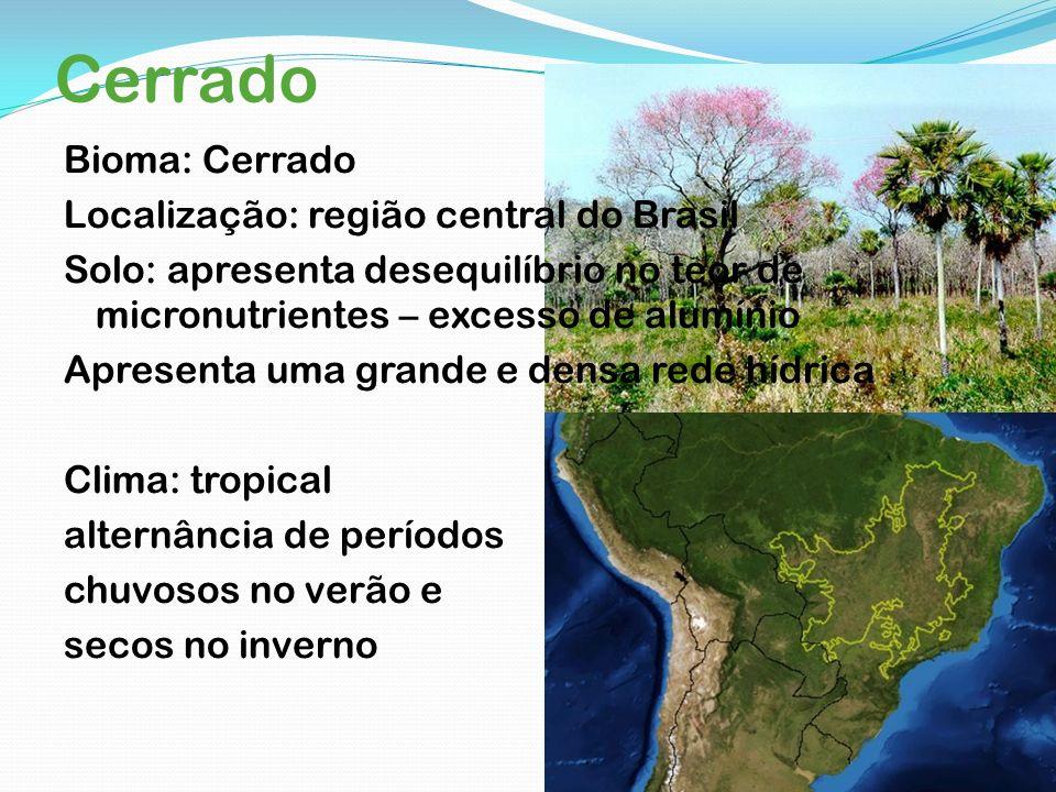 Cerrado Bioma: Cerrado Localização: região central do Brasil Solo: apresenta desequilíbrio no teor de micronutrientes – excesso de alumínio Apresenta