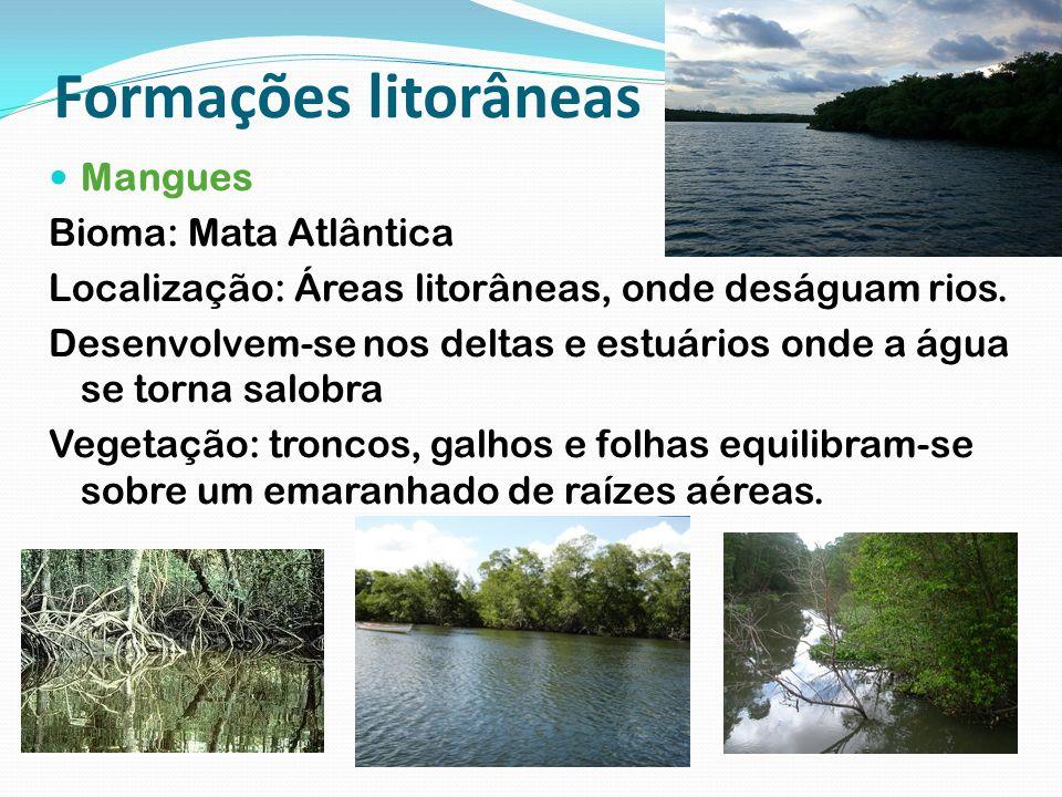 Formações litorâneas Mangues Bioma: Mata Atlântica Localização: Áreas litorâneas, onde deságuam rios. Desenvolvem-se nos deltas e estuários onde a águ