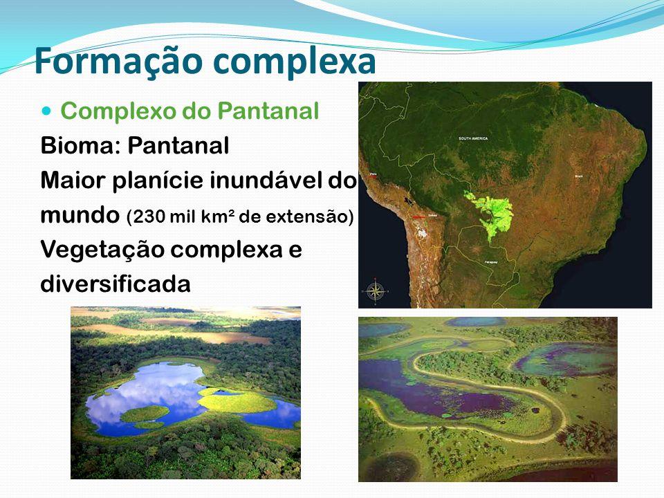 Formação complexa Complexo do Pantanal Bioma: Pantanal Maior planície inundável do mundo (230 mil km² de extensão) Vegetação complexa e diversificada