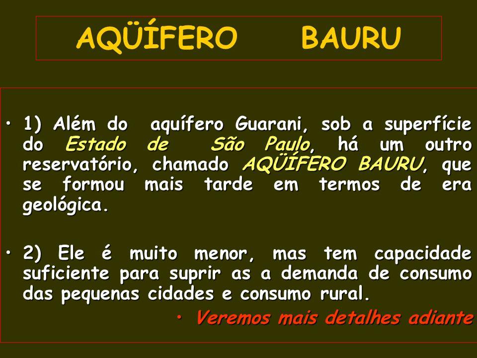AQÜÍFERO BAURU 1) Além do aquífero Guarani, sob a superfície do Estado de São Paulo, há um outro reservatório, chamado AQÜÍFERO BAURU, que se formou mais tarde em termos de era geológica.1) Além do aquífero Guarani, sob a superfície do Estado de São Paulo, há um outro reservatório, chamado AQÜÍFERO BAURU, que se formou mais tarde em termos de era geológica.