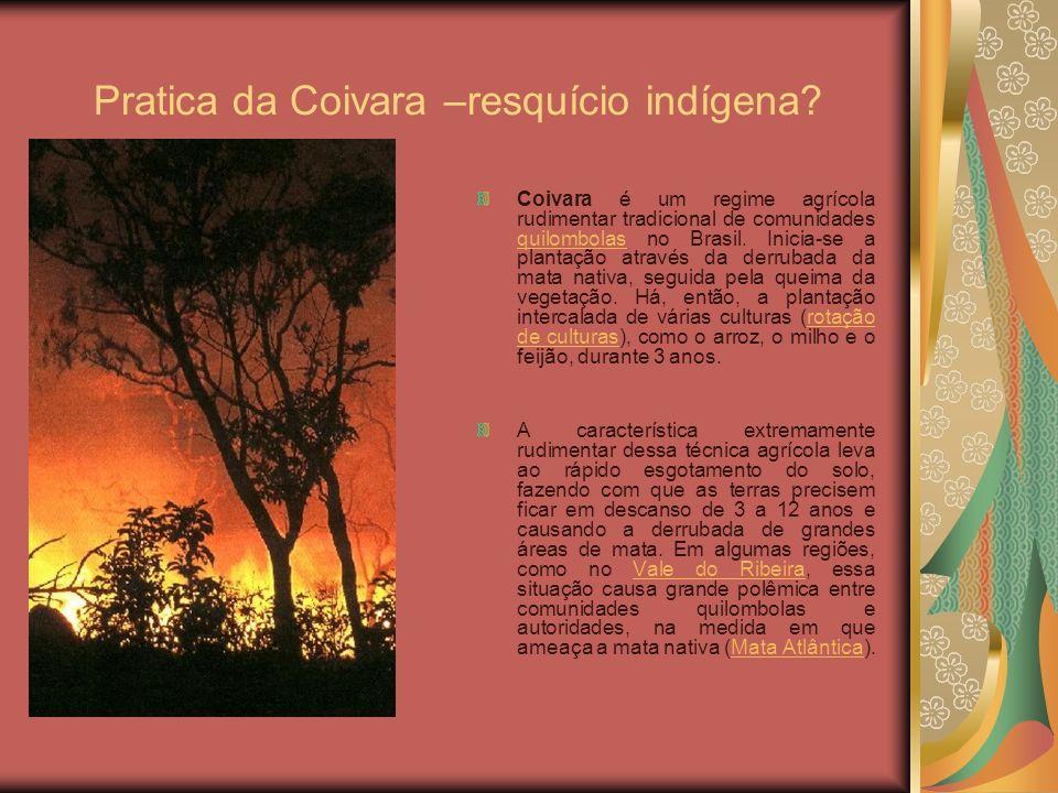 Pratica da Coivara –resquício indígena? Coivara é um regime agrícola rudimentar tradicional de comunidades quilombolas no Brasil. Inicia-se a plantaçã