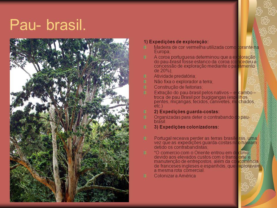 Pau- brasil. 1) Expedições de exploração: Madeira de cor vermelha utilizada como corante na Europa; A coroa portuguesa determinou que a exploração do