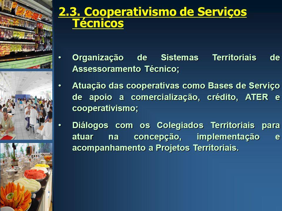 2.3. Cooperativismo de Serviços Técnicos Organização de Sistemas Territoriais de Assessoramento Técnico;Organização de Sistemas Territoriais de Assess