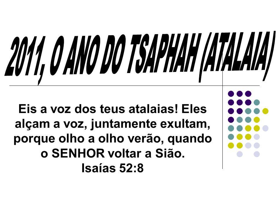 O ANO DO TSAPHAH (ATALAIA) Tsaphah, hebraico: 1) tomar cuidado, olhar ao redor, espiar, vigiar, observar, guardar 1a) (Qal) vigiar, espreitar 1b) (Piel) vigiar, prestar atenção