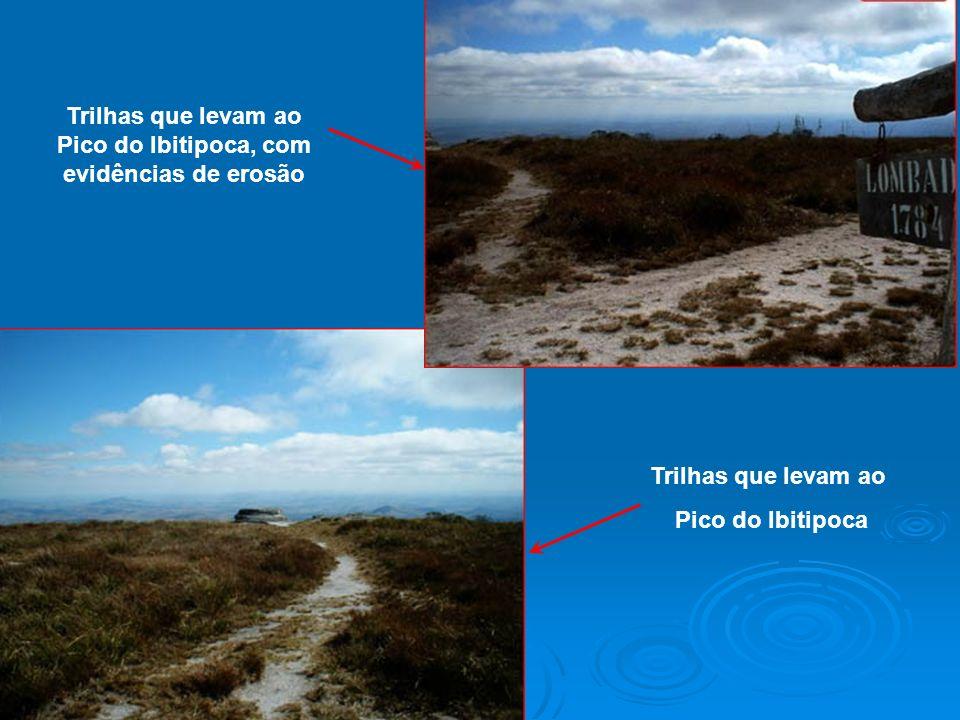 Trilhas que levam ao Pico do Ibitipoca, com evidências de erosão Trilhas que levam ao Pico do Ibitipoca