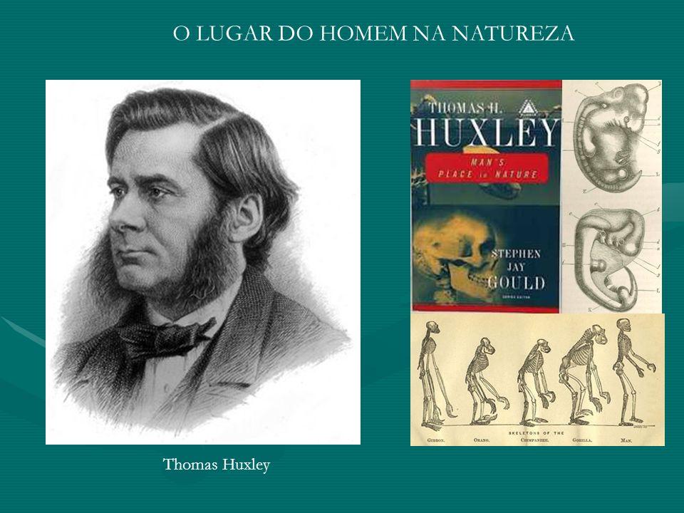 Thomas Huxley O LUGAR DO HOMEM NA NATUREZA
