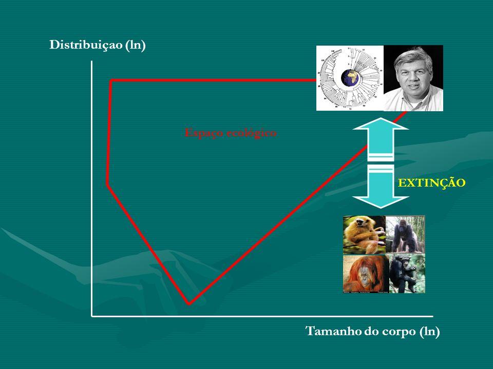 Tamanho do corpo (ln) Distribuiçao (ln) Espaço ecológico EXTINÇÃO