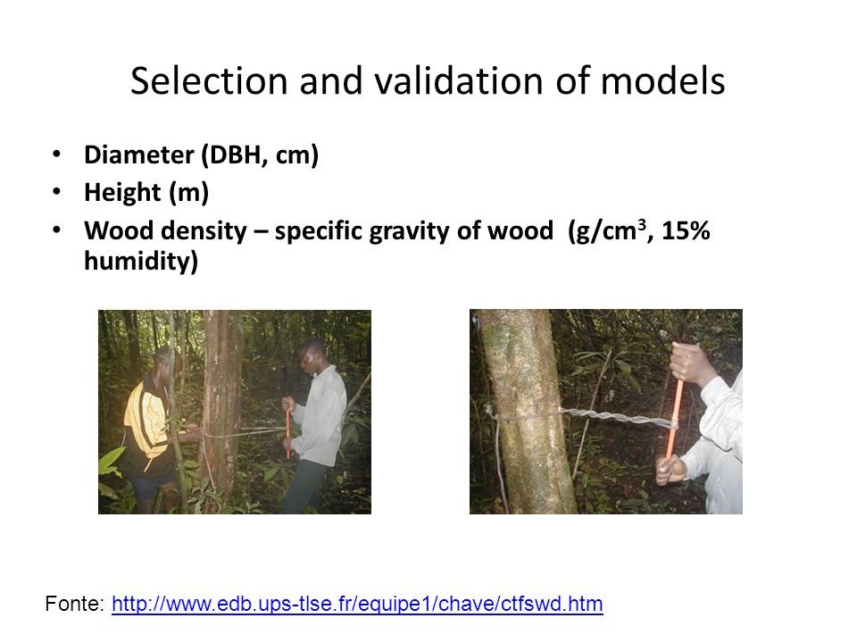 Selection and validation of models Diameter (DBH, cm) Height (m) Wood density – specific gravity of wood (g/cm 3, 15% humidity) Fonte: http://www.edb.