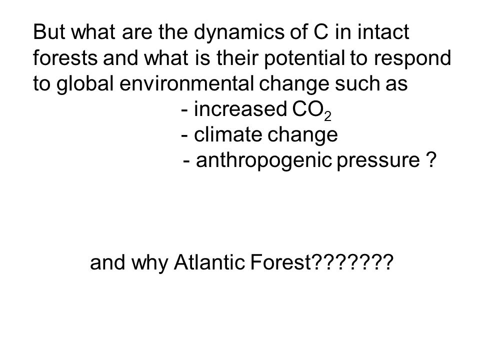 But what are the dynamics of C in intact forests and what is their potential to respond to global environmental change such as - increased CO 2 - clim