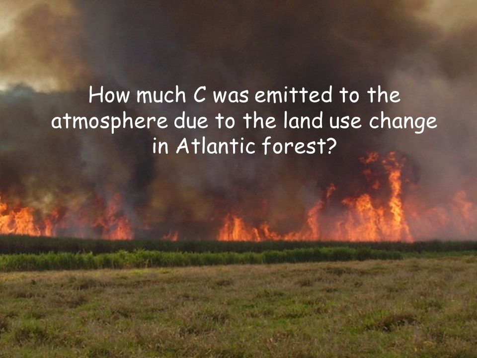 How much C was emitted to the atmosphere due to the land use change in Atlantic forest?