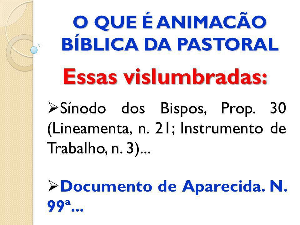 O QUE É ANIMACÃO BÍBLICA DA PASTORAL Essas vislumbradas: Sínodo dos Bispos, Prop. 30 (Lineamenta, n. 21; Instrumento de Trabalho, n. 3)... Documento d