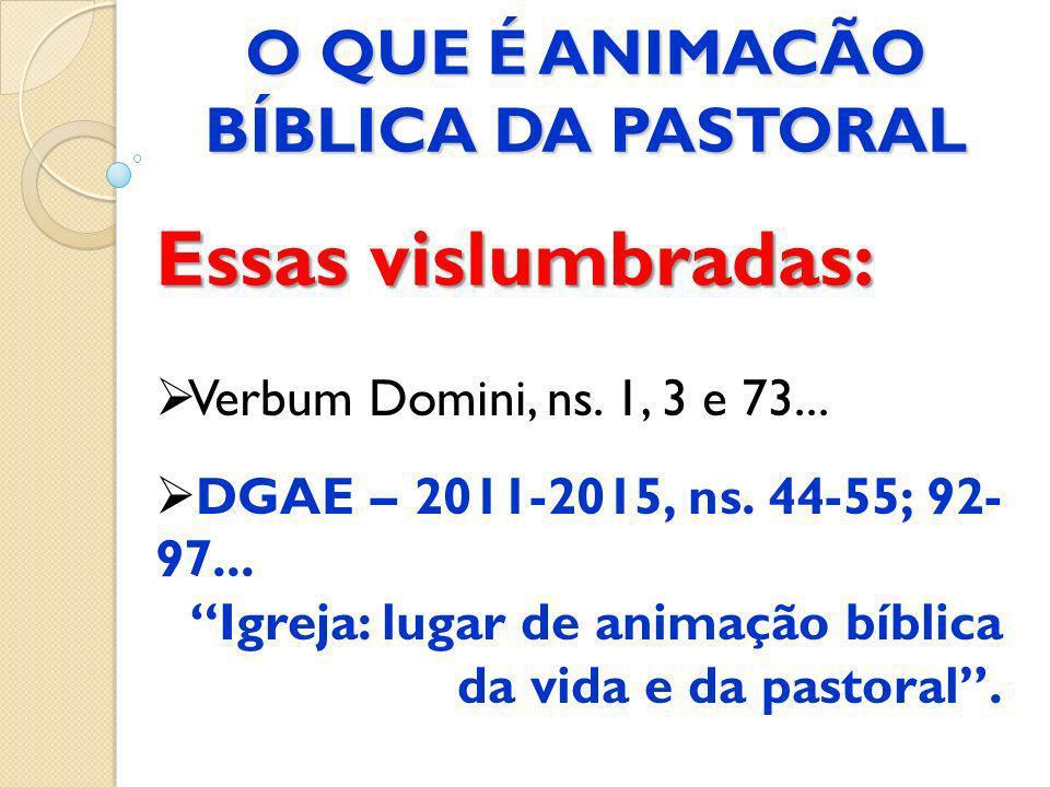 Essas vislumbradas: Verbum Domini, ns. 1, 3 e 73... DGAE – 2011-2015, ns. 44-55; 92- 97... Igreja: lugar de animação bíblica da vida e da pastoral. O