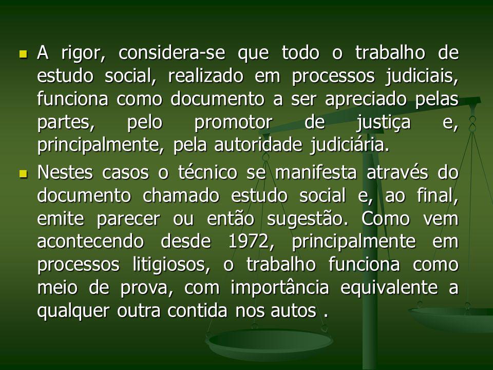 A rigor, considera-se que todo o trabalho de estudo social, realizado em processos judiciais, funciona como documento a ser apreciado pelas partes, pe