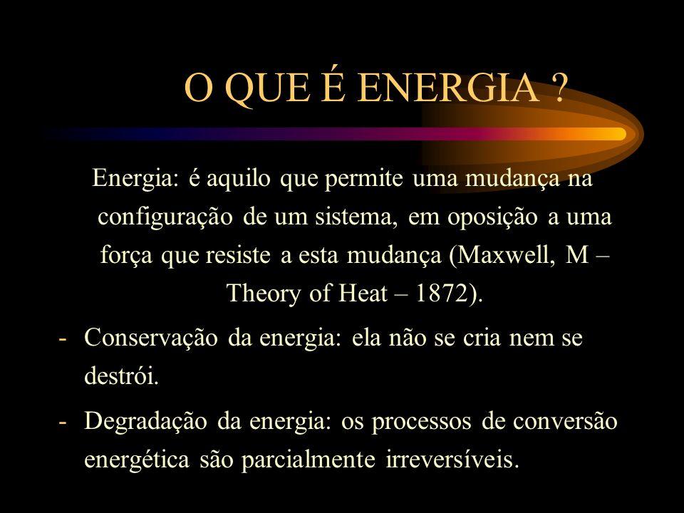 ESCO E CONTRATO DE PERFORMANCE ESCO – Empresa de Serviço de Conservação de Energia: vive de explorar a racionalização do uso da energia nas empresas.