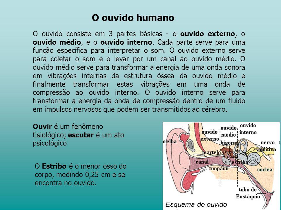O ouvido consiste em 3 partes básicas - o ouvido externo, o ouvido médio, e o ouvido interno.