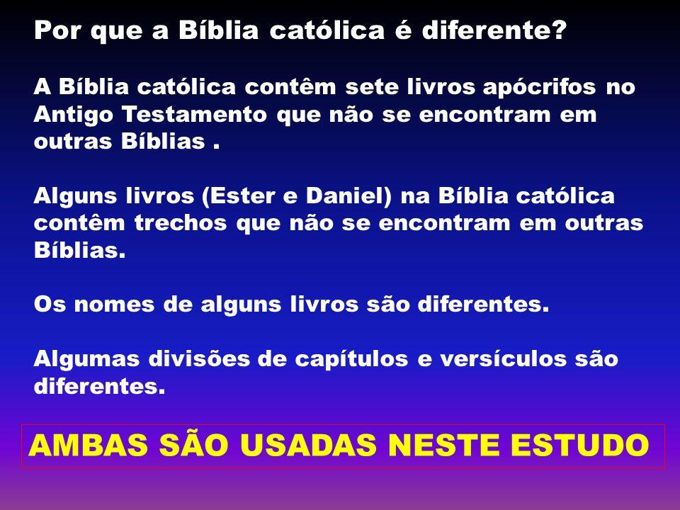Por que a Bíblia católica é diferente? A Bíblia católica contêm sete livros apócrifos no Antigo Testamento que não se encontram em outras Bíblias. Alg