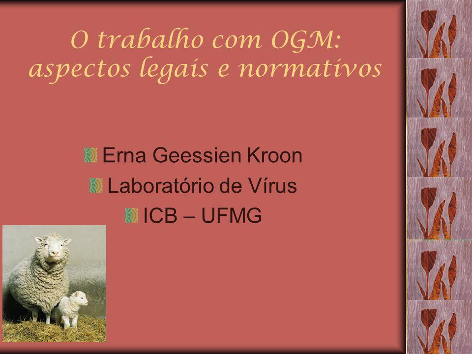 O trabalho com OGM: aspectos legais e normativos Erna Geessien Kroon Laboratório de Vírus ICB – UFMG