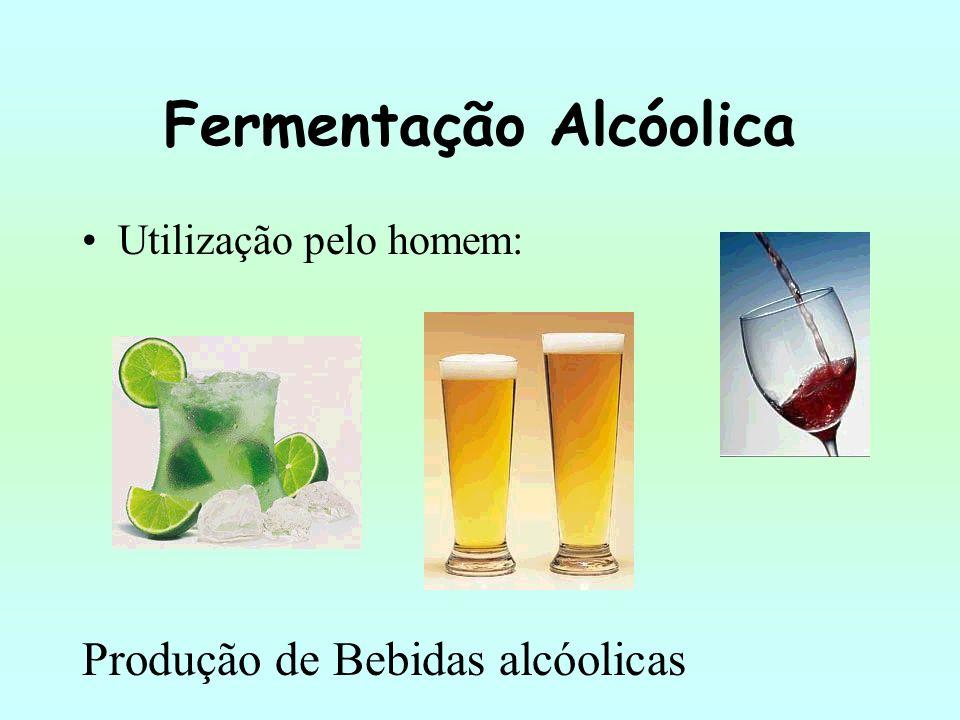 Fermentação Alcóolica Utilização pelo homem: Produção de Bebidas alcóolicas