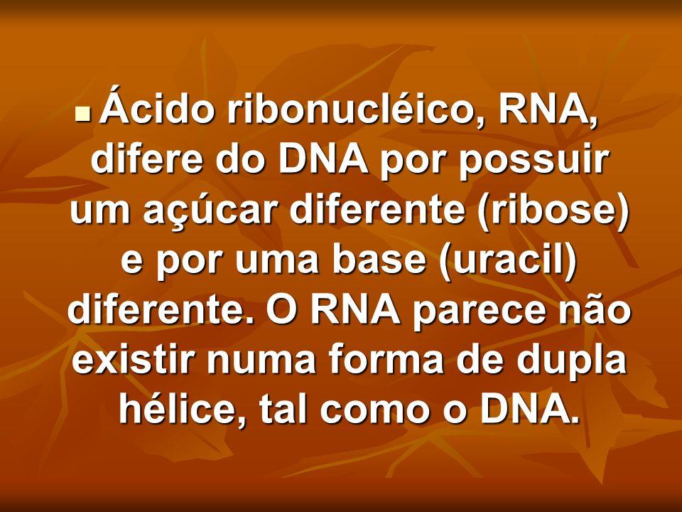 Ácido ribonucléico, RNA, difere do DNA por possuir um açúcar diferente (ribose) e por uma base (uracil) diferente. O RNA parece não existir numa forma