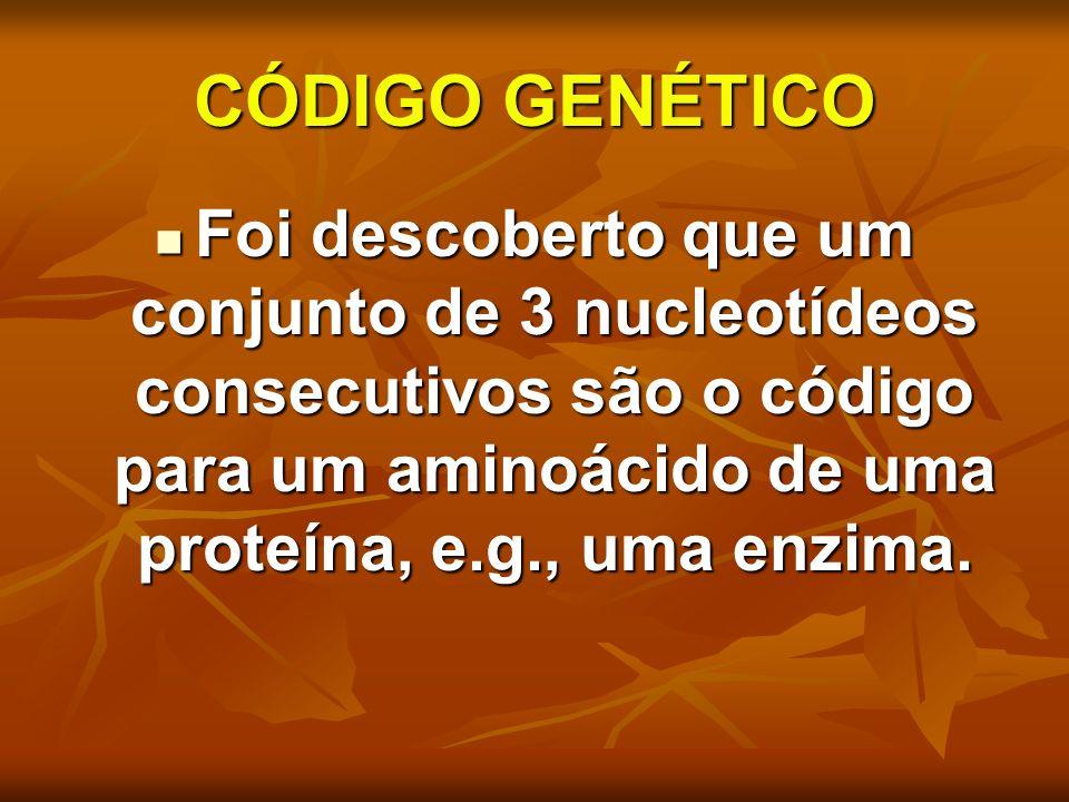 CÓDIGO GENÉTICO Foi descoberto que um conjunto de 3 nucleotídeos consecutivos são o código para um aminoácido de uma proteína, e.g., uma enzima. Foi d
