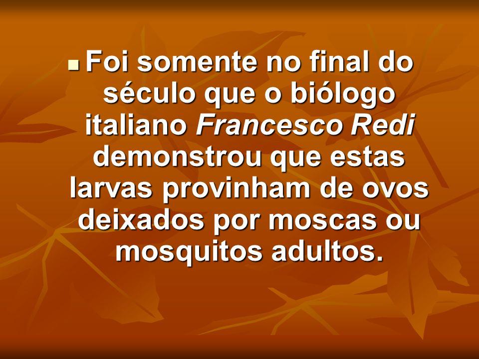 Foi somente no final do século que o biólogo italiano Francesco Redi demonstrou que estas larvas provinham de ovos deixados por moscas ou mosquitos ad