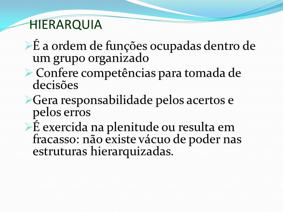 HIERARQUIA É a ordem de funções ocupadas dentro de um grupo organizado Confere competências para tomada de decisões Gera responsabilidade pelos acerto