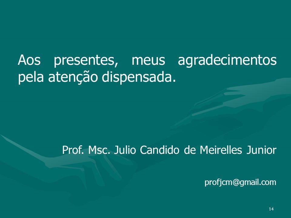 14 Aos presentes, meus agradecimentos pela atenção dispensada. Prof. Msc. Julio Candido de Meirelles Junior profjcm@gmail.com