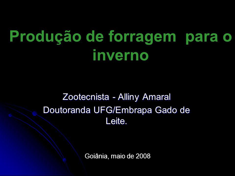Produção de forragem para o inverno Zootecnista - Alliny Amaral Doutoranda UFG/Embrapa Gado de Leite. Goiânia, maio de 2008