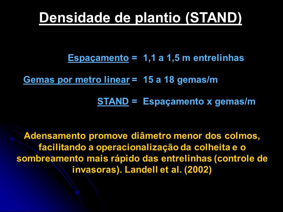 Densidade de plantio (STAND) Espaçamento =1,1 a 1,5 m entrelinhas Gemas por metro linear =15 a 18 gemas/m STAND =Espaçamento x gemas/m Adensamento pro
