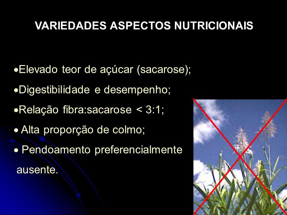 Elevado teor de açúcar (sacarose); Digestibilidade e desempenho; Relação fibra:sacarose < 3:1; Alta proporção de colmo; Pendoamento preferencialmente