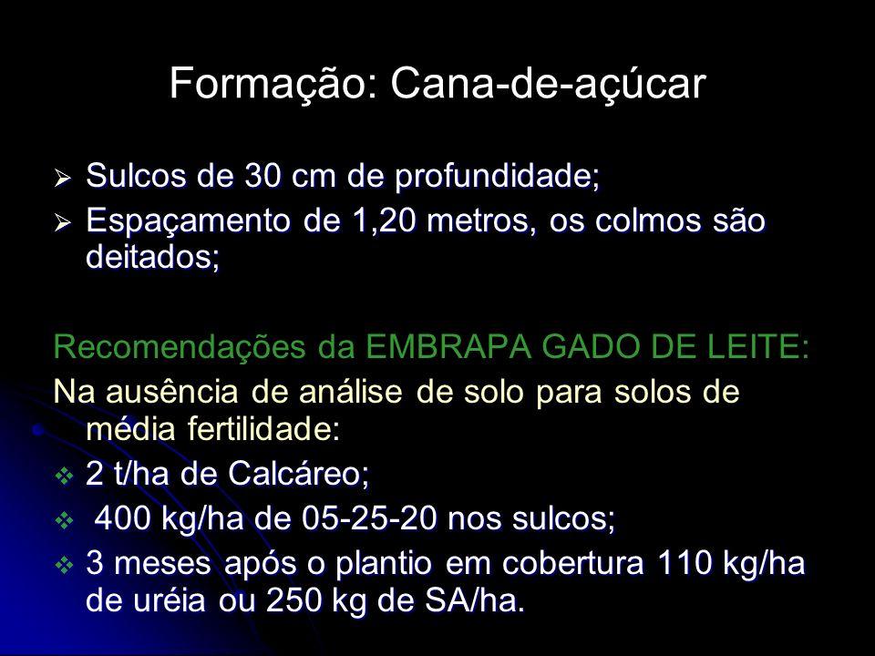 Formação: Cana-de-açúcar Sulcos de 30 cm de profundidade; Sulcos de 30 cm de profundidade; Espaçamento de 1,20 metros, os colmos são deitados; Espaçam