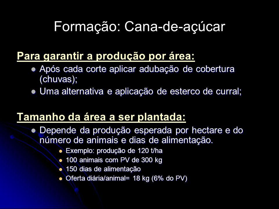 Formação: Cana-de-açúcar Para garantir a produção por área: Após cada corte aplicar adubação de cobertura (chuvas); Após cada corte aplicar adubação d