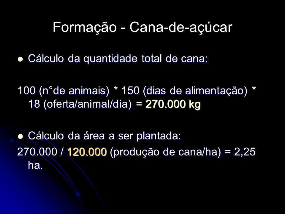 Formação - Cana-de-açúcar Cálculo da quantidade total de cana: Cálculo da quantidade total de cana: 100 (n°de animais) * 150 (dias de alimentação) * 1