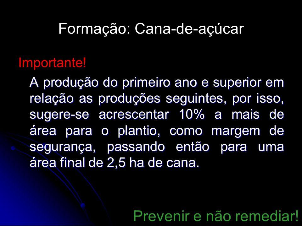 Formação: Cana-de-açúcar Importante! A produção do primeiro ano e superior em relação as produções seguintes, por isso, sugere-se acrescentar 10% a ma