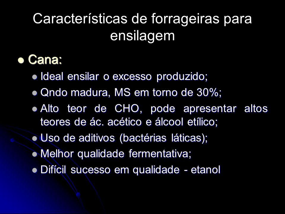 Características de forrageiras para ensilagem Cana: Cana: Ideal ensilar o excesso produzido; Ideal ensilar o excesso produzido; Qndo madura, MS em tor