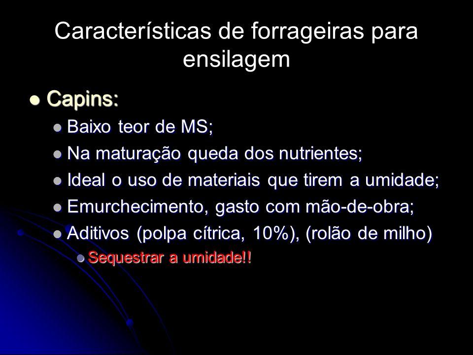 Características de forrageiras para ensilagem Capins: Capins: Baixo teor de MS; Baixo teor de MS; Na maturação queda dos nutrientes; Na maturação qued