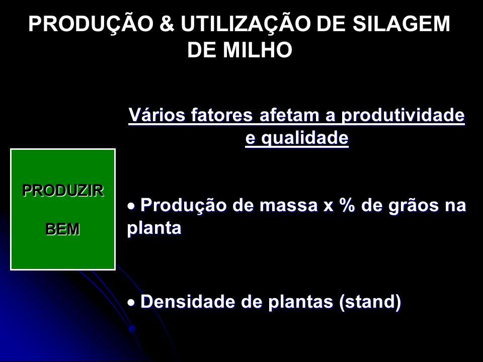 PRODUÇÃO & UTILIZAÇÃO DE SILAGEM DE MILHO PRODUZIRBEM Vários fatores afetam a produtividade e qualidade Produção de massa x % de grãos na planta Produ